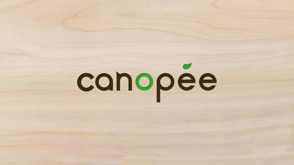 Inu Media webdesigner dans le doubs a réalisé les cartes de visite de Canopee à Lyoffans